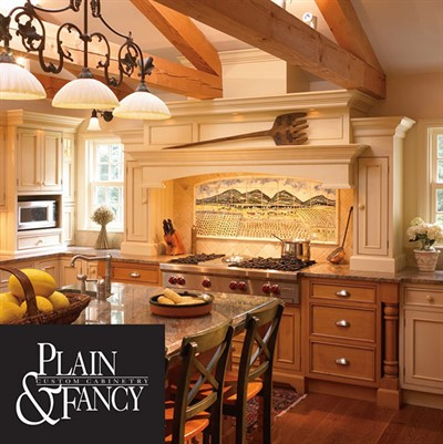 plain and fancy cabinets plain and fancy cabinets b amp t kitchens amp baths 24765